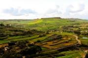 Spring Gozo